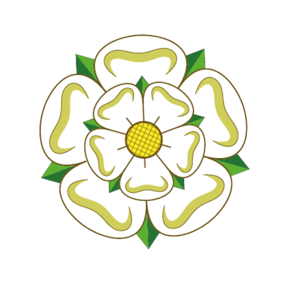 drawing of a white rose of York